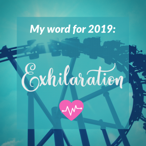 "Rollercoaster silhouetted in the background with the text ""Word for 2019: Exhilaration"""